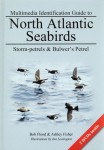 Multimedia Identification Guide to North Atlantic Seabirds: Storm-petrels & Bulwer's Petrel jacket image