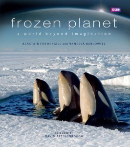 Frozen Planet: A World Beyond Imagination jacket image