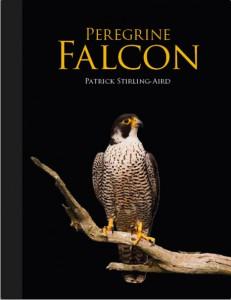 Peregrine Falcon jacket image