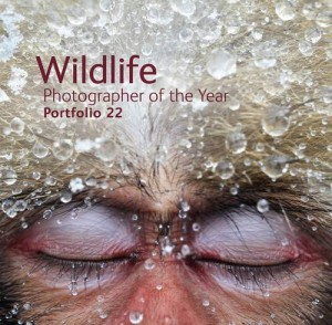 Wildlife Photographer of the Year, Portfolio 22 jacket image