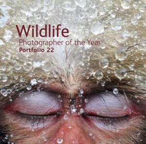 Wildlife Photographer of the Year, Portfolio 22 jacket image