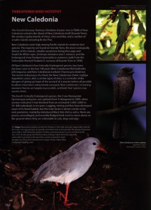 New Caledonia - The World's Rarest Birds page detail