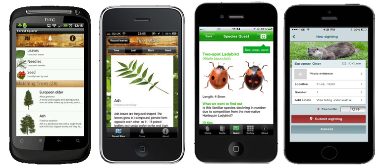 Our ten favourite (and free) apps for wildlife lovers - Hoopoe - A