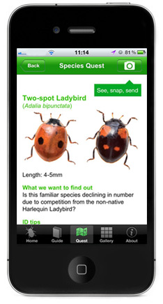 Apps for Wildlife Lovers - Opal Bugs Count