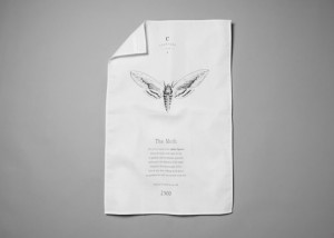 Creature Candy moth tea towel