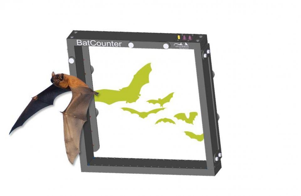 BatCounter