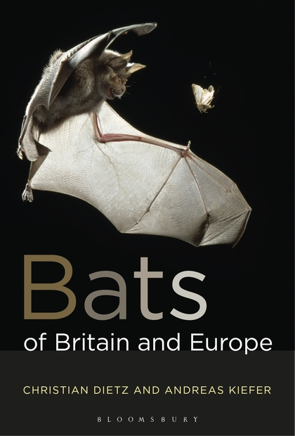 Bats of Britain and Europe