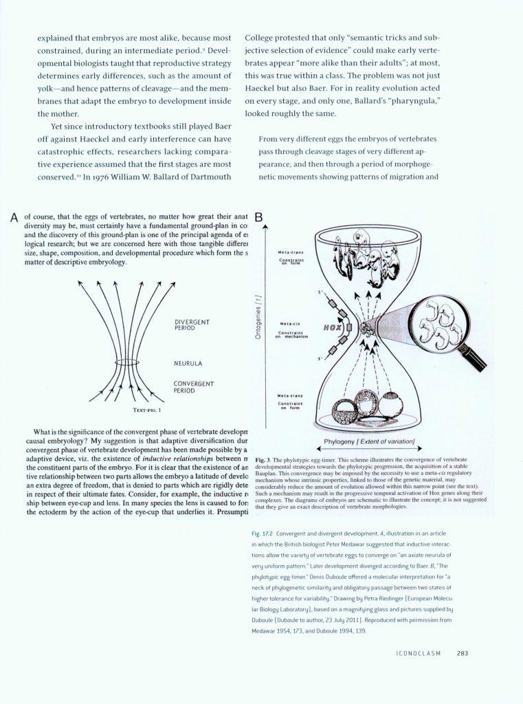 Haeckel's Embryos page 283