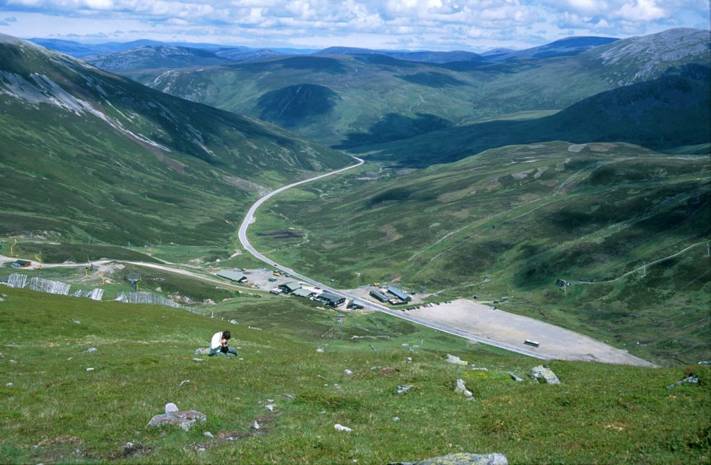 The slopes of the Glenshee Ski Area south of Braemar on the Perthshire/Aberdeenshire boundary are one of the most accessible sites to see a good range of Britain's montane flora. Photo: Michael Scott