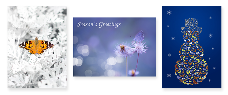 Butterfly Conservation 2016 Christmas Cards