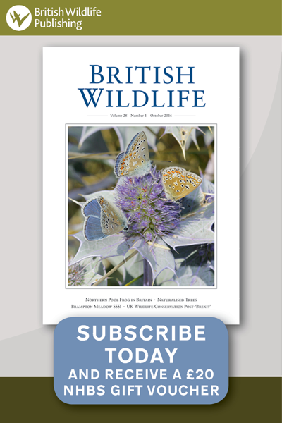 British Wildlife Subscriptions