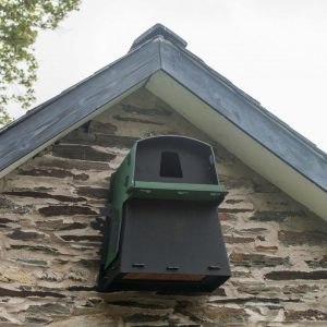 Eco Barn Owl Nest Box