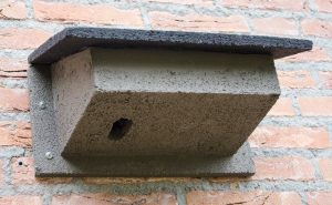 WoodStone Swift Nest Box