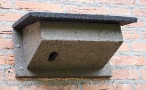 WoodStone Swift Nest Box
