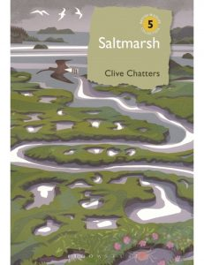 Saltmarsh by Clive Chatters