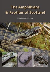 The Amphibians and Reptiles of Scotland