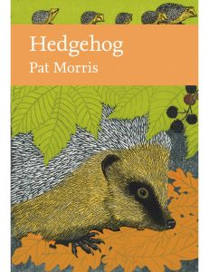 Hedgehog New Naturalist