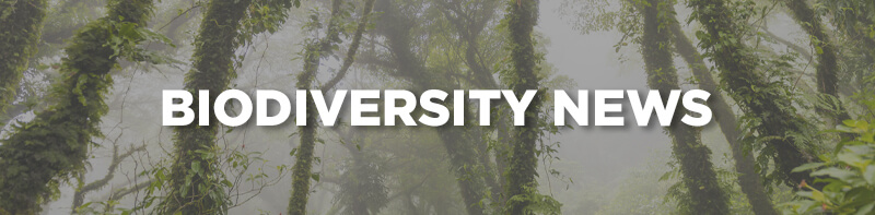 This Week in Biodiversity News – 3rd August
