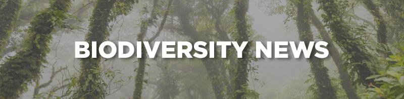 Biodiversity News