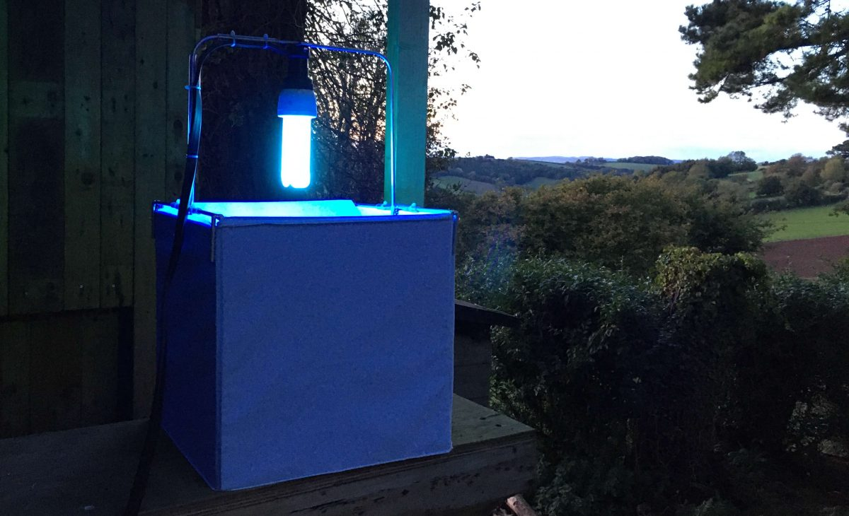 Introducing the NHBS Moth Trap