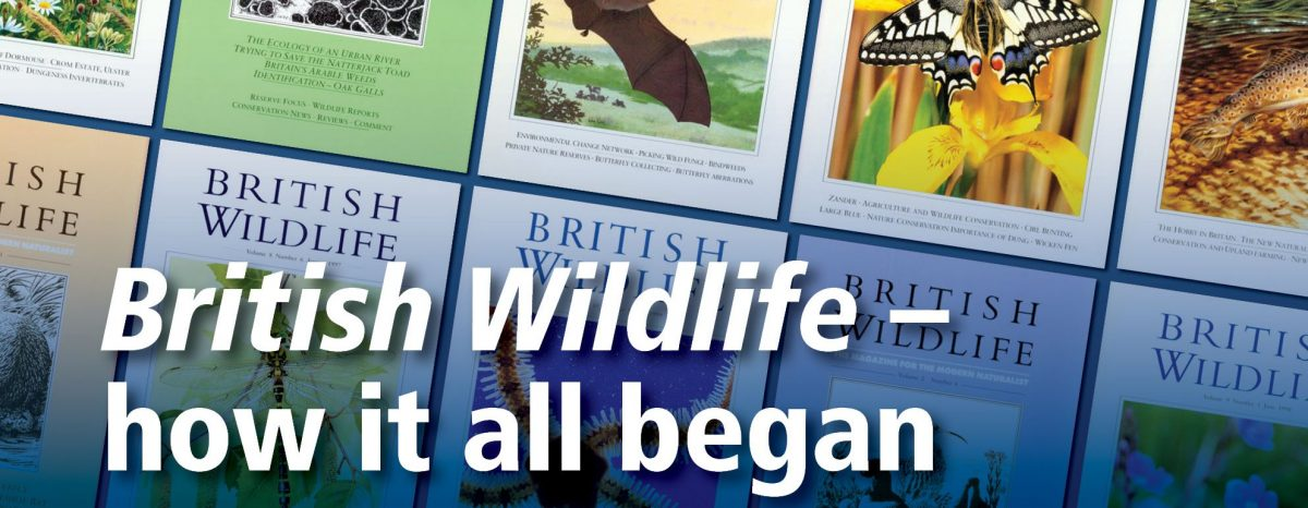 Celebrating 30 years of British Wildlife!