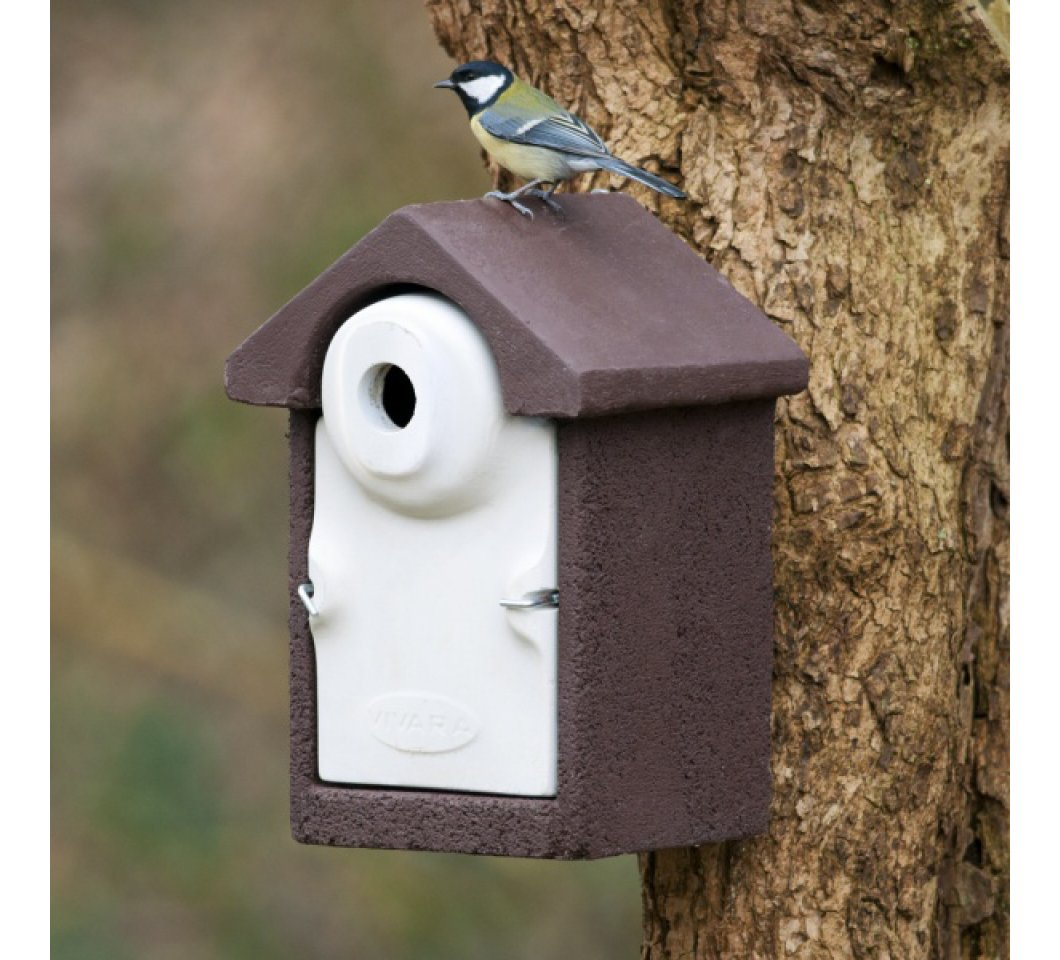 How to Clean a Nest Box