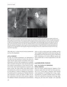 Spider Webs internal 2